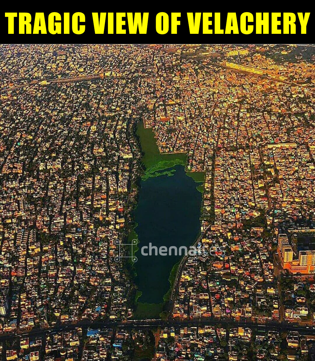 breathtaking view of the Velachery