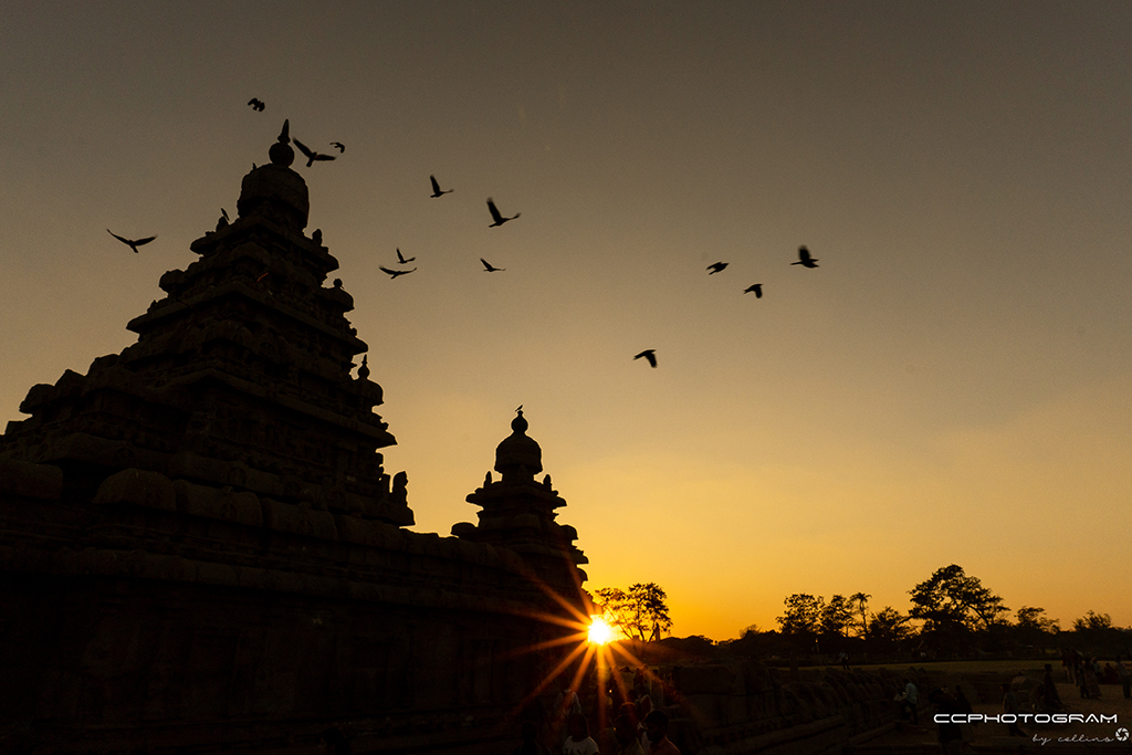 My love for Mahabalipuram golden hours